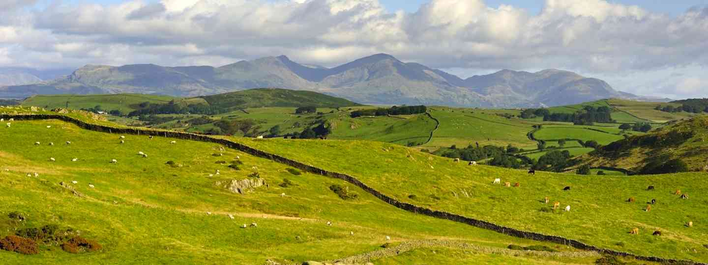 Old Man of Coniston (Dreamstime)
