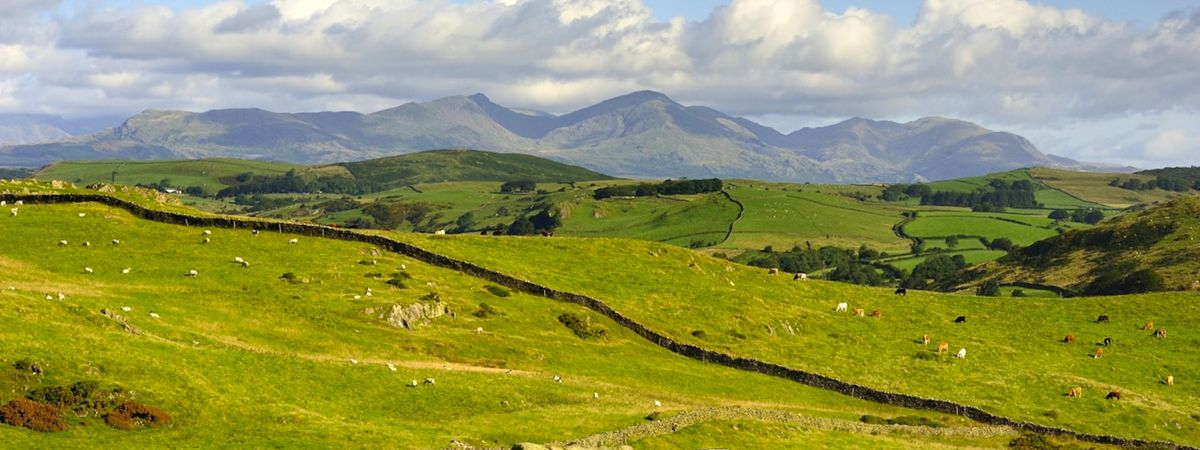 10 top trips to discover wildlife and nature in the UK
