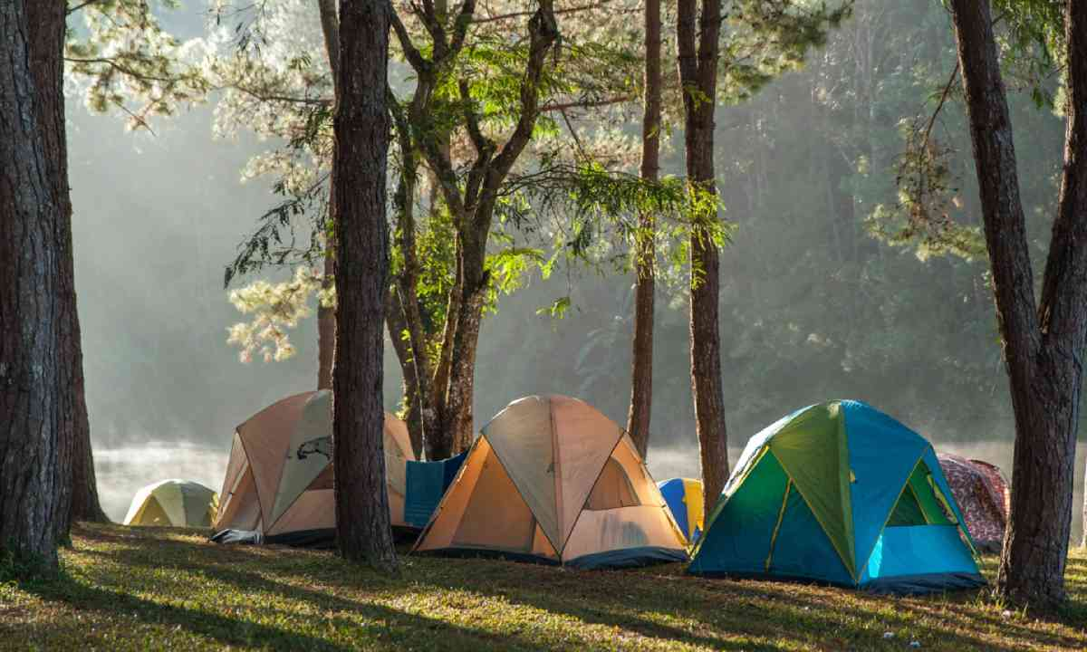 Camping in the woods (Shutterstock)