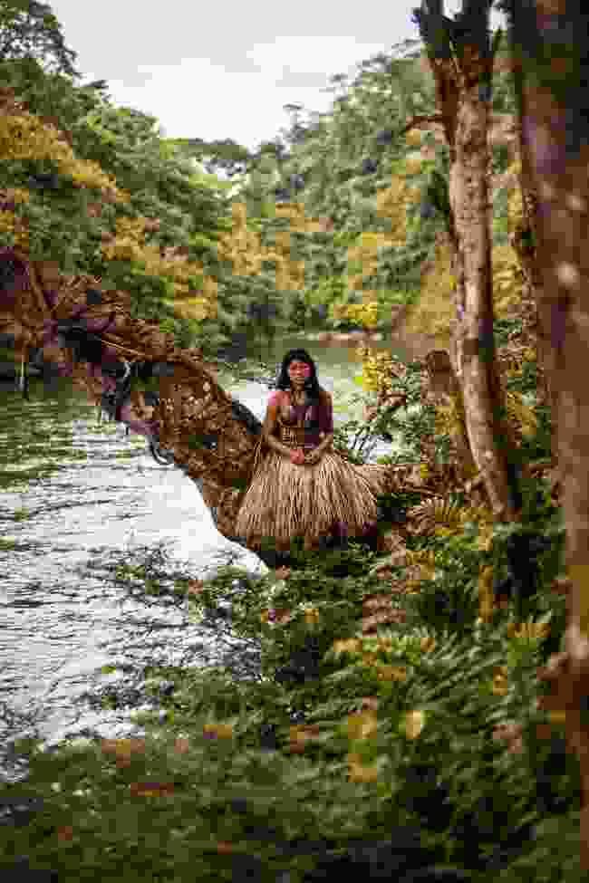 Amazon rainforest, Ecuador (Mihaela Noroc)