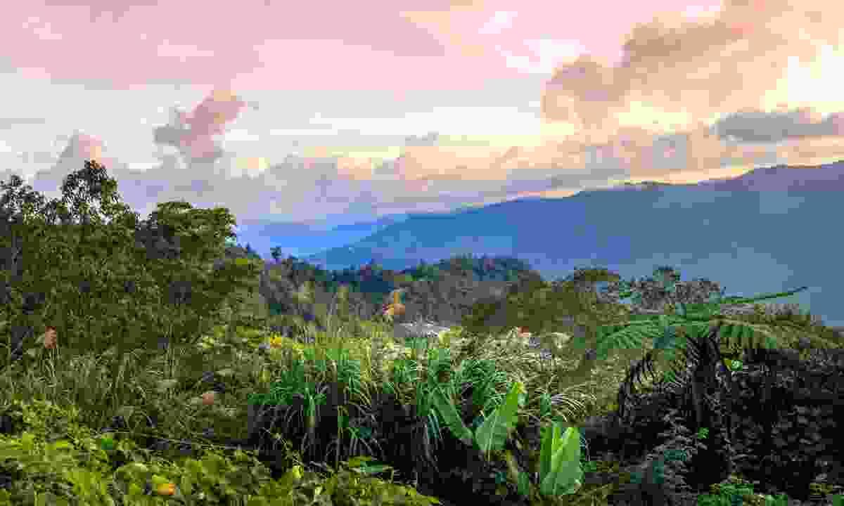 Kinabalu National Park, Borneo, Malaysia (Shutterstock)