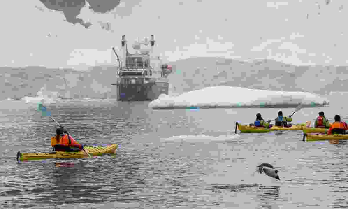 Enjoy off-ship adventures such as sea kayaking (Cindy Miller Hopkins)