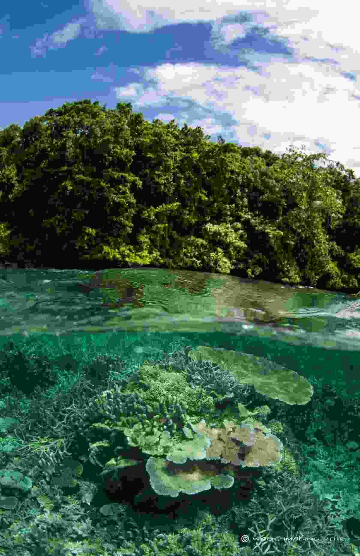 Milne Bay (Wade Imaging)