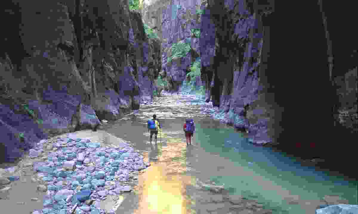 The Narrows is one of Zion National Park's most strenuous day hikes (Tom Till)
