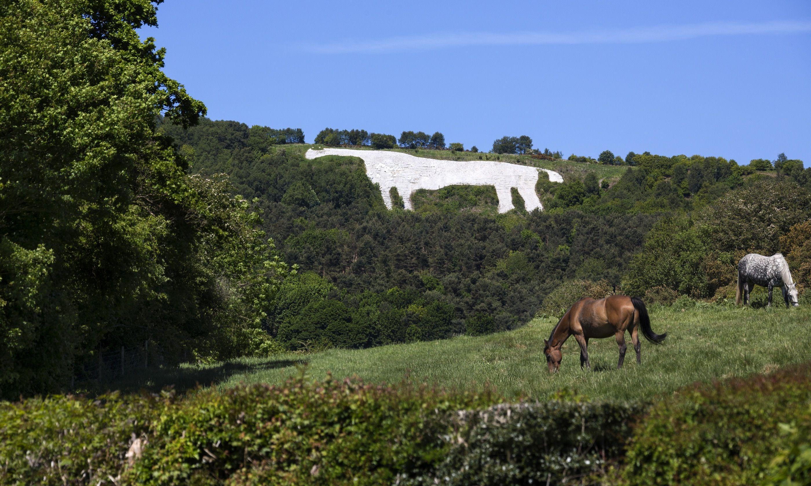 Kilburn White Horse (Dreamstime)