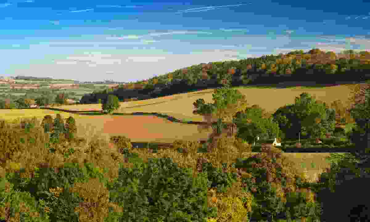 The Shropshire Hills in autumn (Dreamstime)