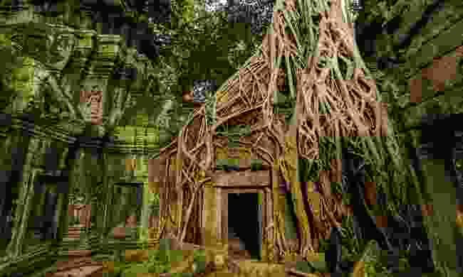 Ta Prohm, Cambodia (Shutterstock)