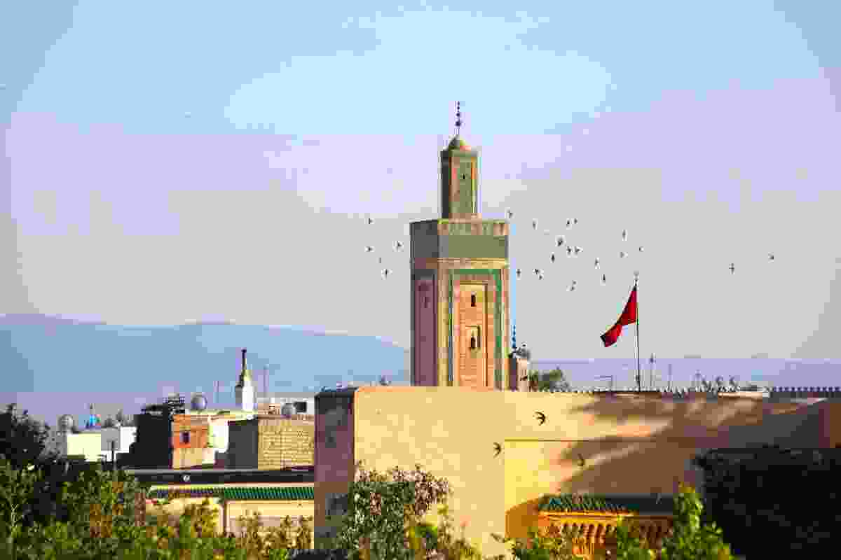 Swallows circling a mosque in Fez, Morocco (Graeme Green)