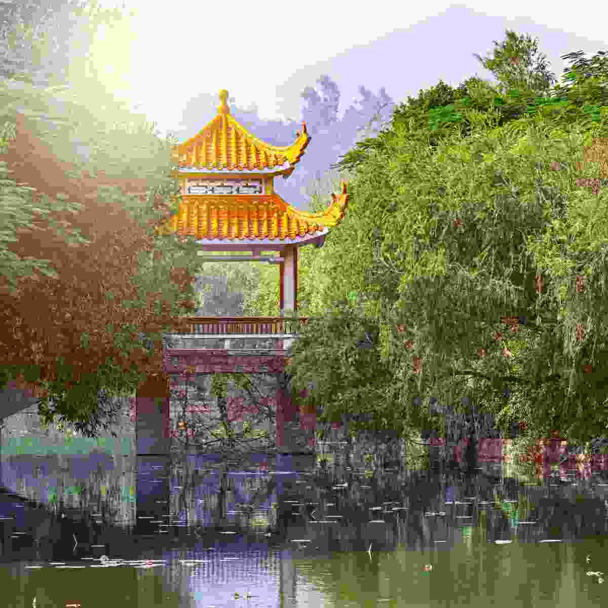 Lianhua Park in the centre of Shenzhen (Shutterstock)