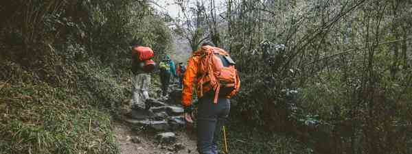 A group of hikers. (Dreamstime)