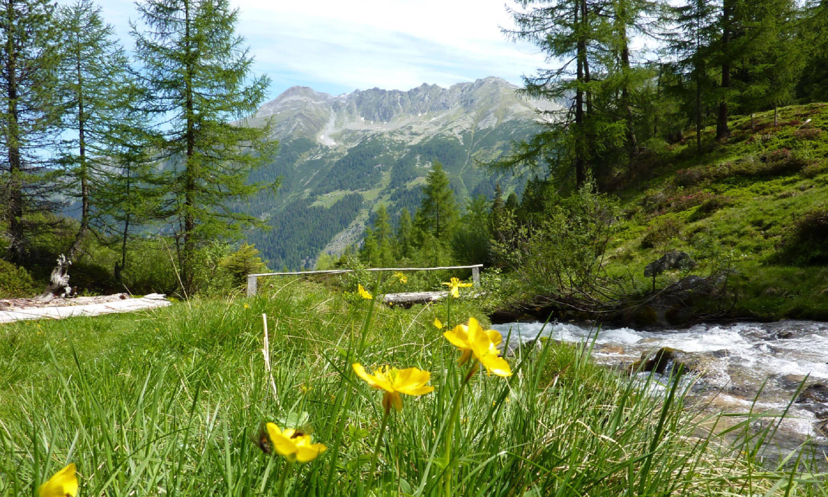 River-side hiking in Vorarlberg (Shutterstock)