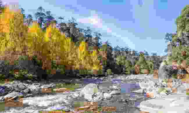 The Merak Sakteng Trek, Bhutan (Shutterstock)