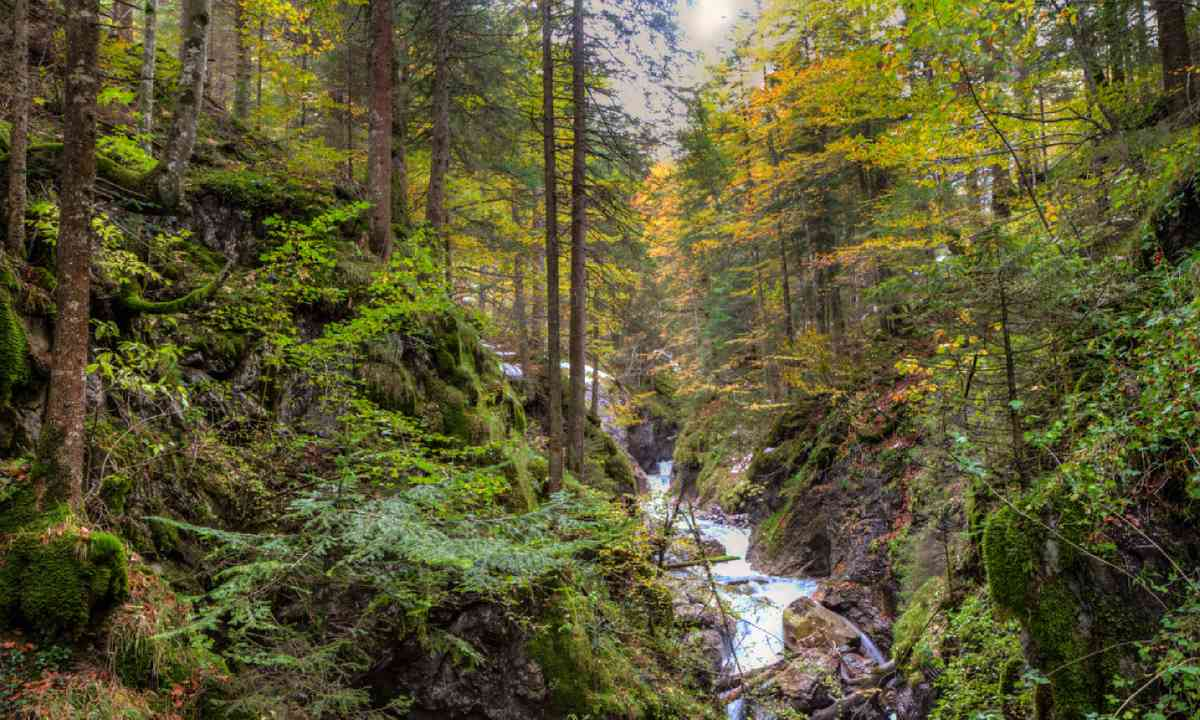 Canyon in Brandnertal valley (Shutterstock)