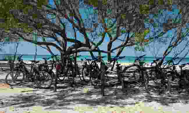 Biking to the sands of Cayo Jutías beach (Claire Boobbyer)