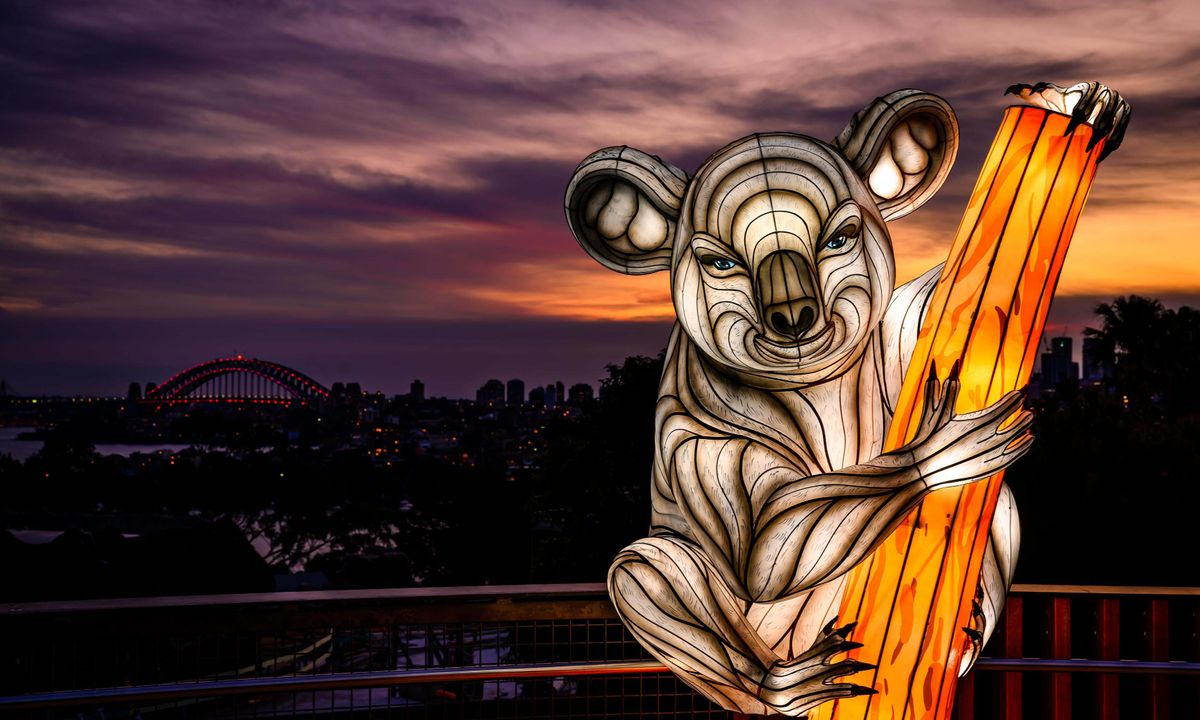 Totally lit: Breathtaking photos from Sydney's stunning Vivid festival
