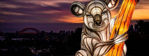 Totally lit: Breathtaking photos from Sydney's stunning