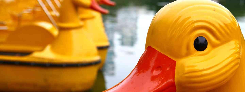 Duck boats in Lumphini Park, Bangkok (Dreamstime)