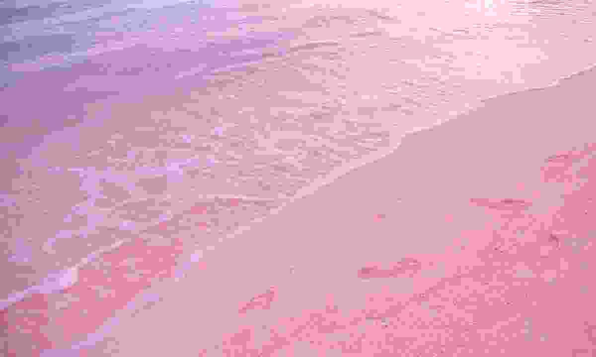 Bahamas pink sand beach (Shutterstock)
