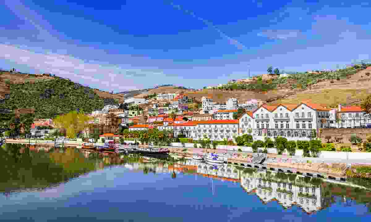 The picturesque Douro river and vineyards in Douro valley, Portugal