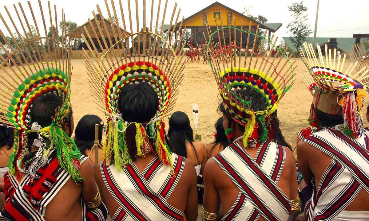 Exotic headdress on display at Hornbill Festival (Dreamstime)