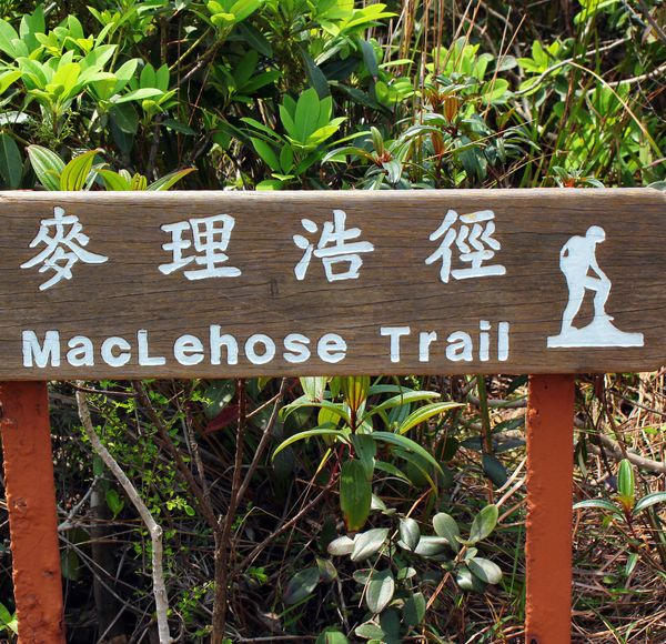 If you like this, try... MacLehose Trail. This 100km trek traverses Hong Kong's New Territories for more alternative city views.