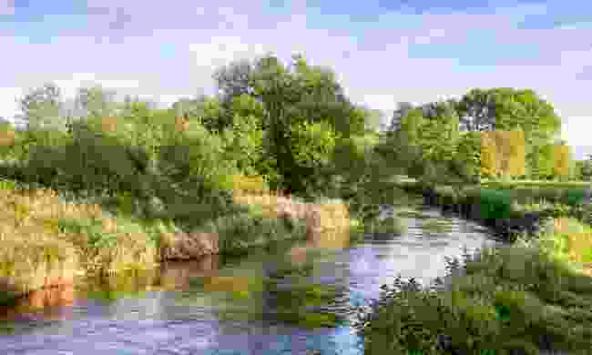 River Itchen near Winchester (Shutterstock)