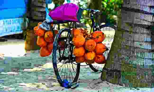 Bike on a beach in Sri Lanka (Shutterstock)