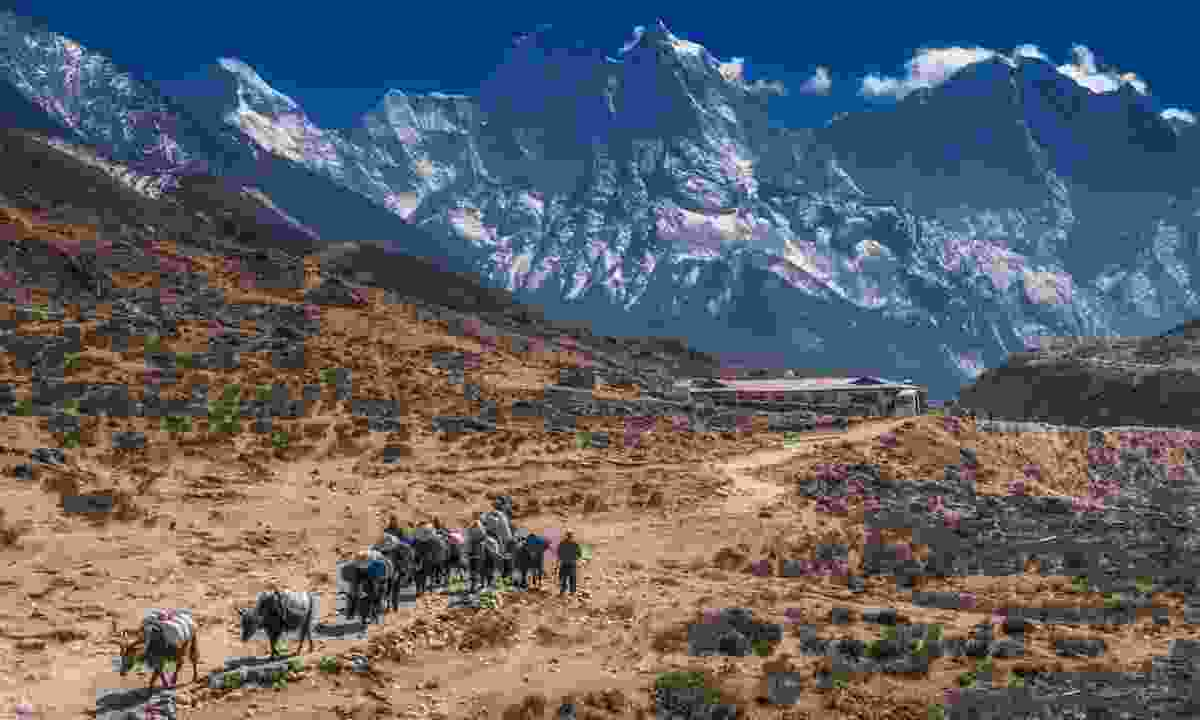 Sagarmatha National Park, Nepal (Shutterstock)
