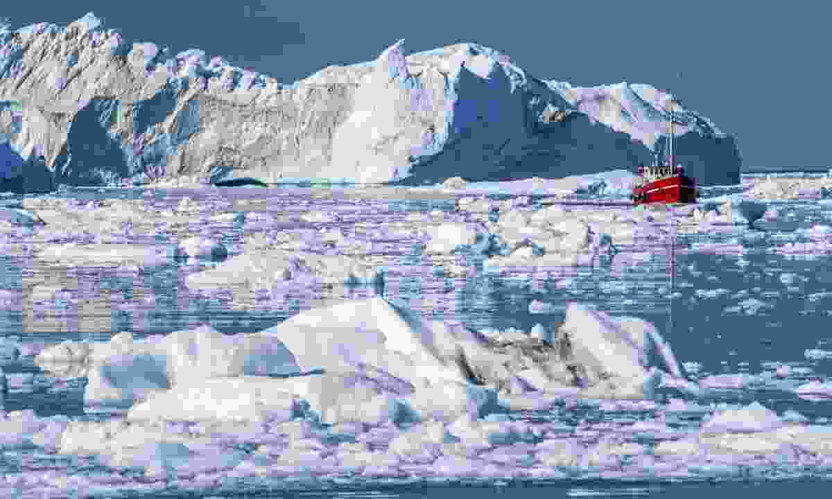 Some of the huge icerbergs of Disko Bay (Dreamstime)