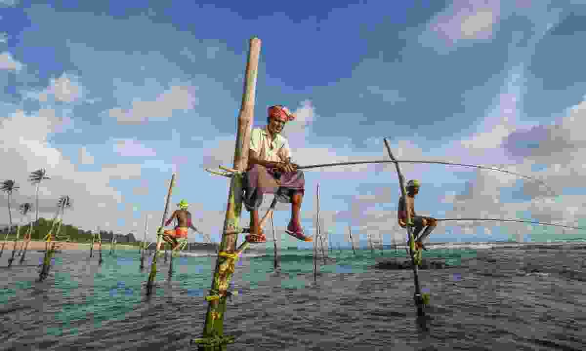 Traditional stilt fishermen near Galle (Shutterstock)