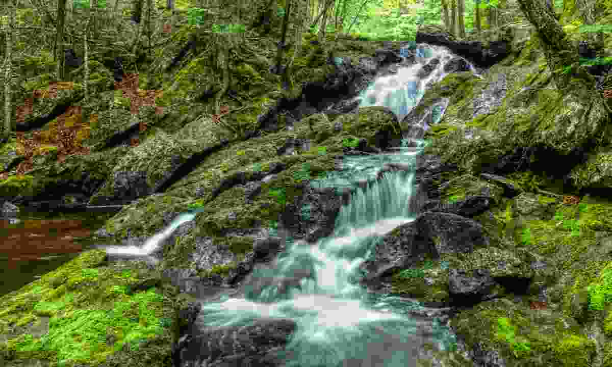 A waterfall in springtime on the Kingston Peninsula (Dreamstime)