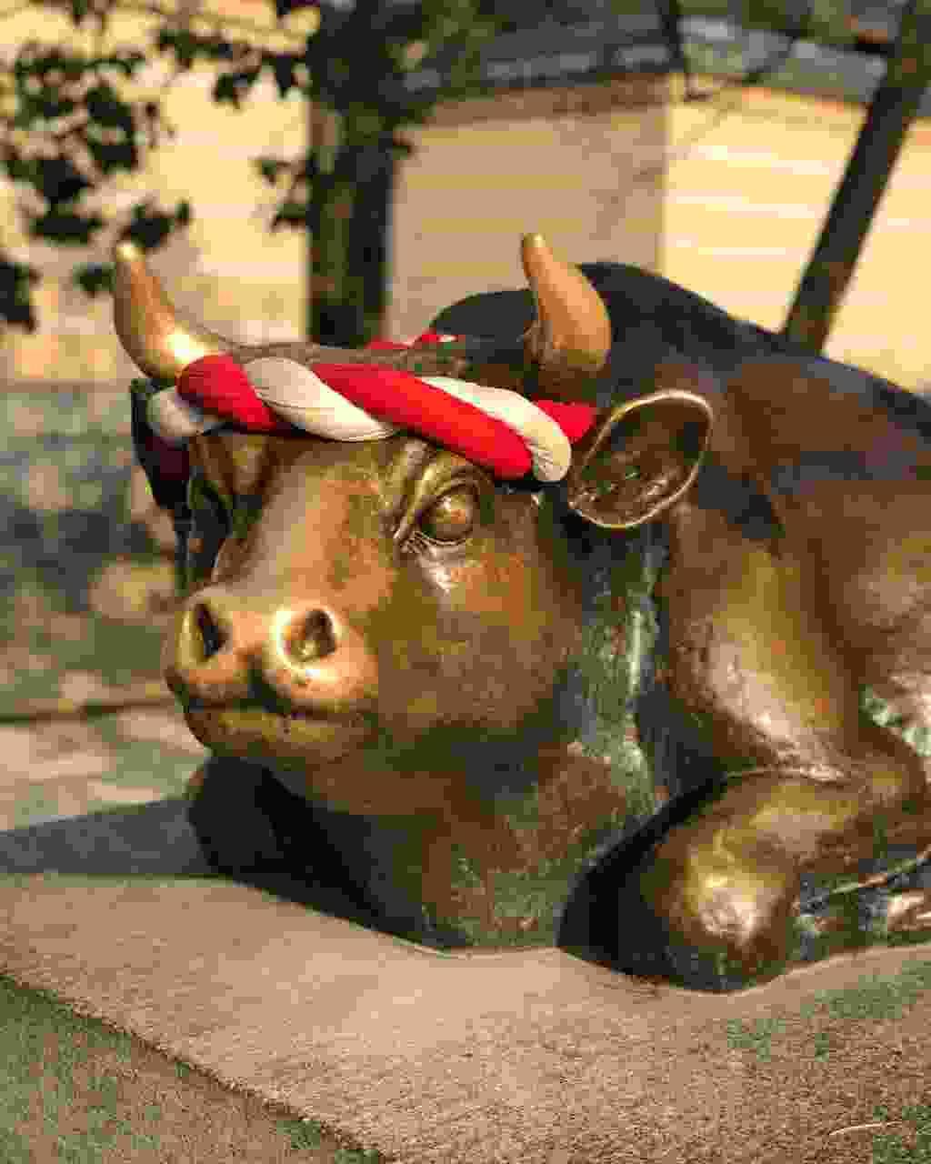 Rub the bull's head for luck in Dazaifu