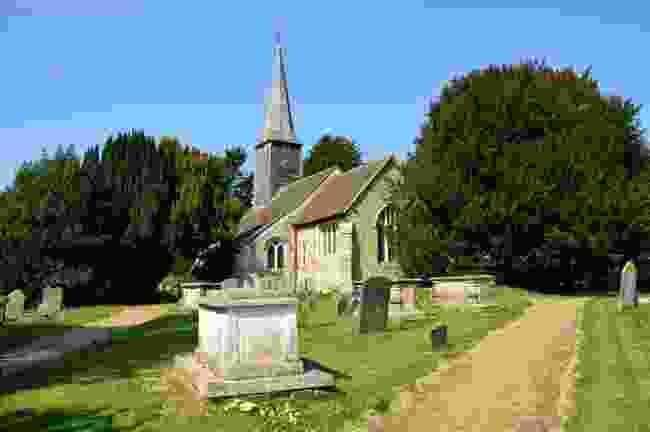 The Crowhurst Yew, Surrey (Dreamstime)