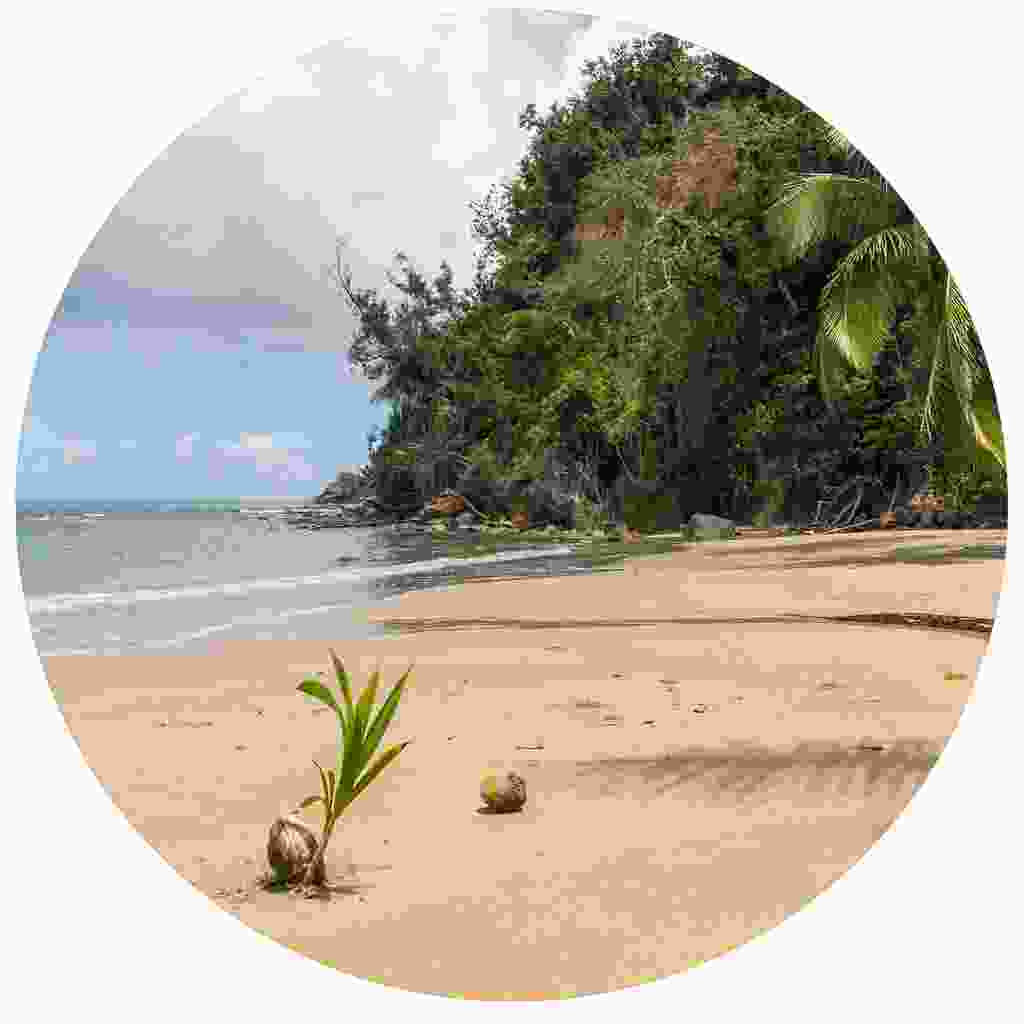 Be inspired by the beaches