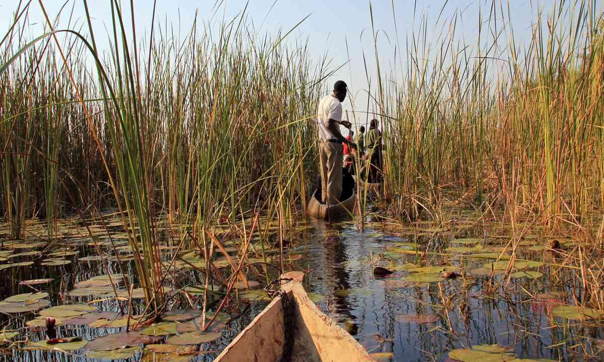 Mokoro Safari in Okavango Delta (Shutterstock.com)