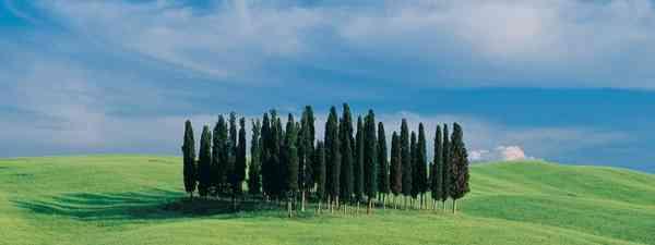 St Quirico D'Orcia, Tuscany, Italy (Charlie Waite)