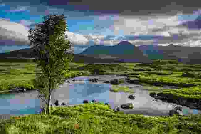 Rannoch Moor (Shutterstock)