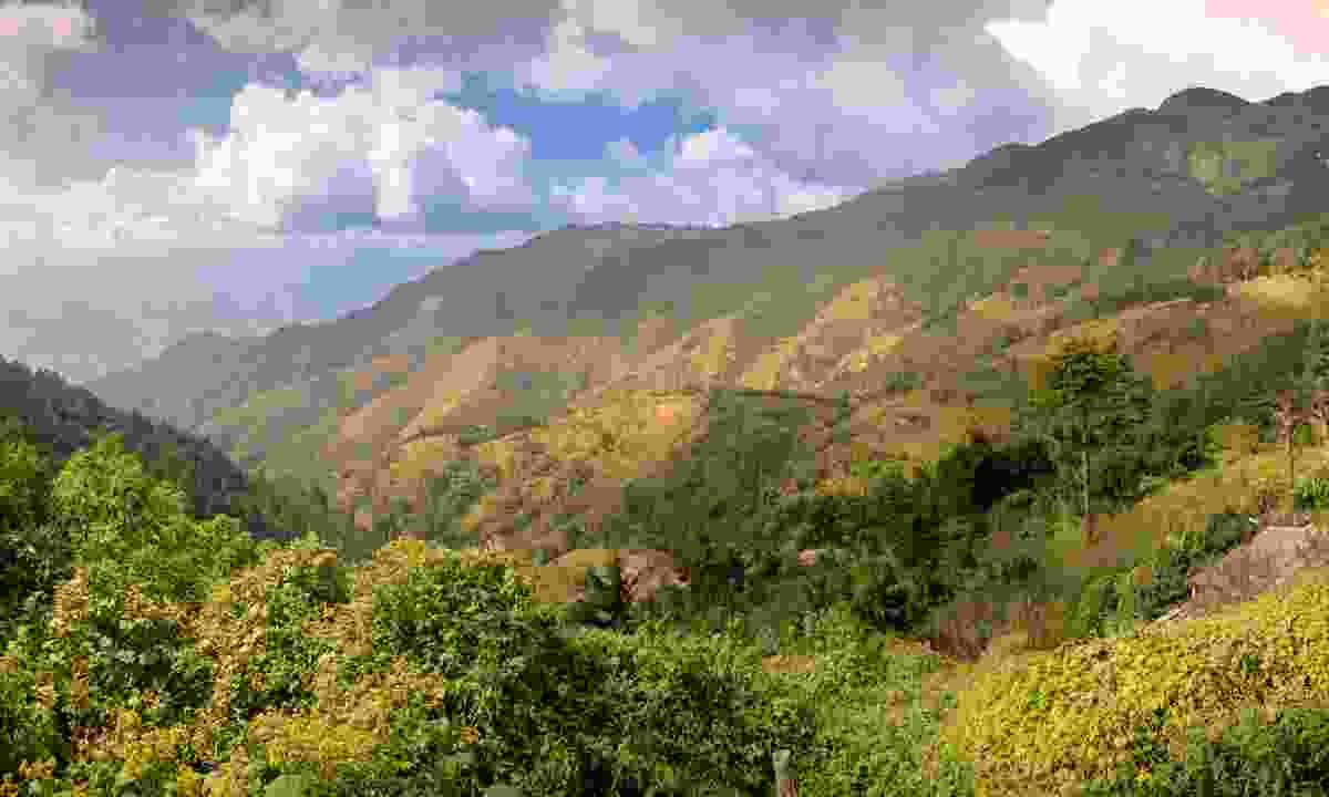 El Pital is the highest point in El Salvador (Shutterstock)