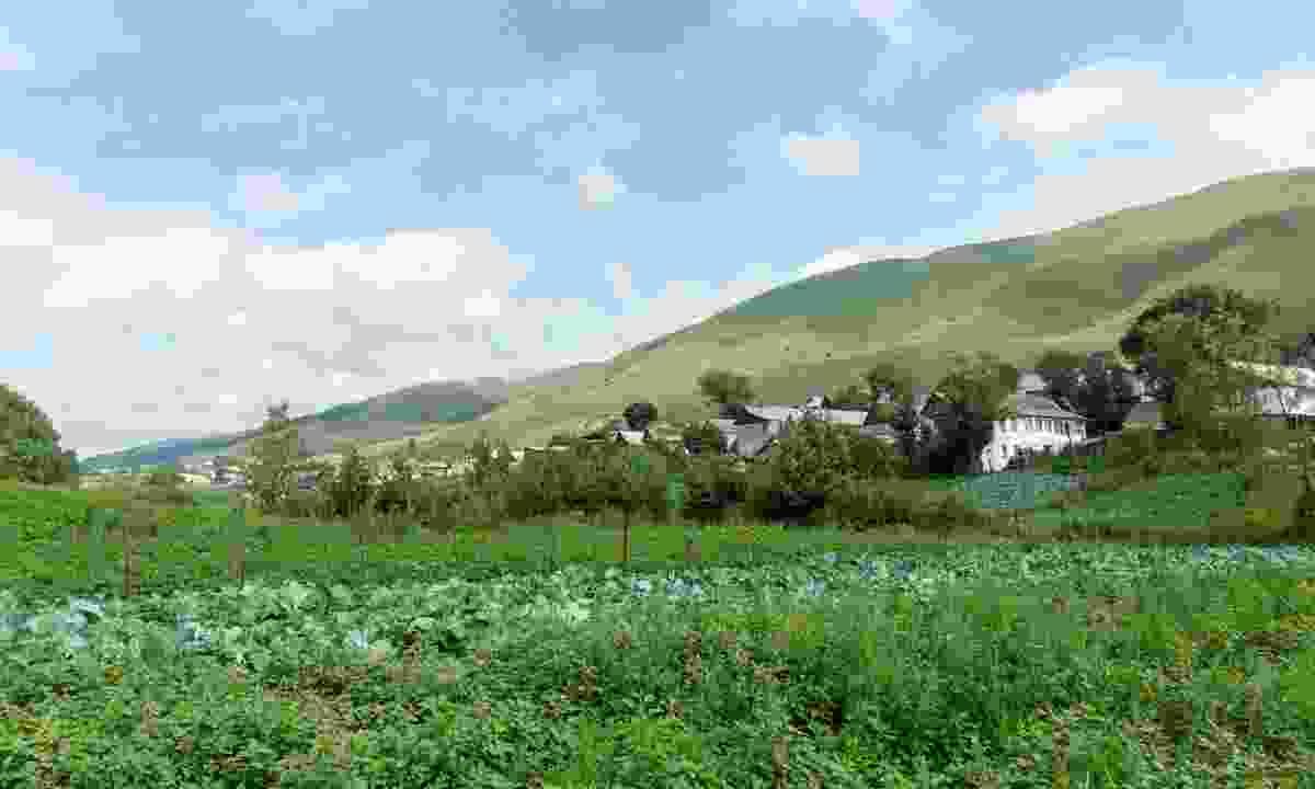Fioletevo is the village of the Molokans in Armenia (Shutterstock)