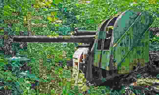 World War II era Japanese guns being reclaimed by the jungle on Pohnpei Island (Dreamstime)