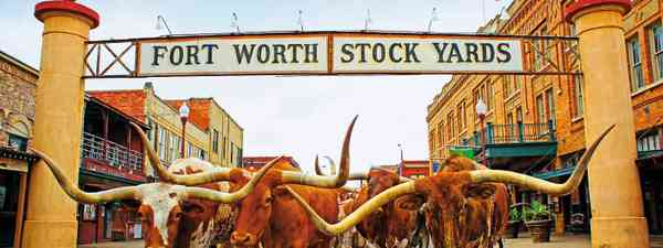 Why to visit Fort Worth, Texas (Visit Fort Worth)