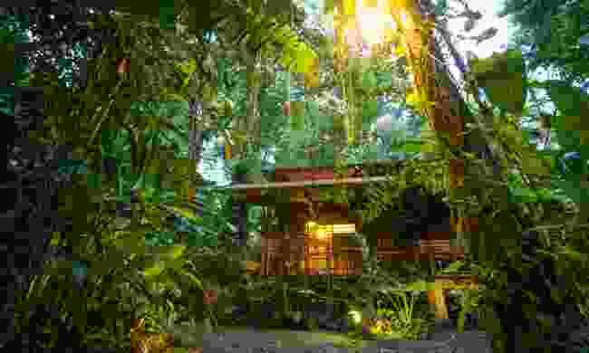 Eco lodge in the rainforest in Costa Rica (Shutterstock)