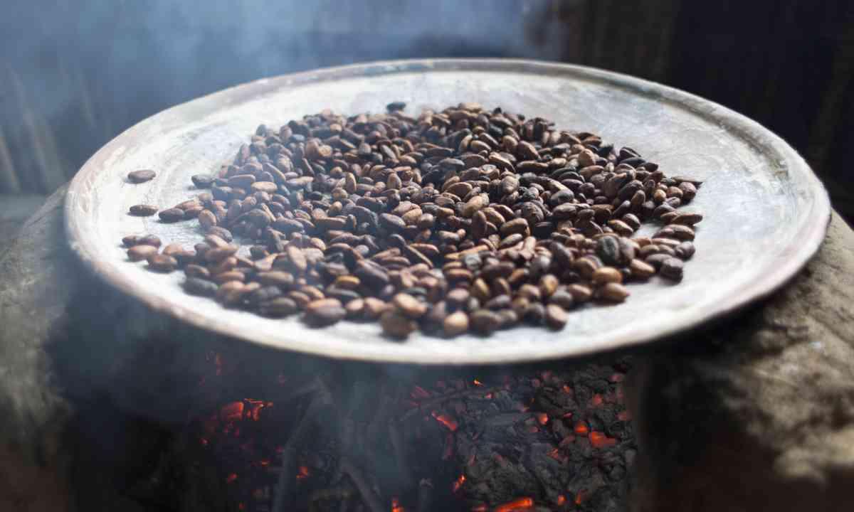 Beans roasting in Oaxaca (Shutterstock.com)