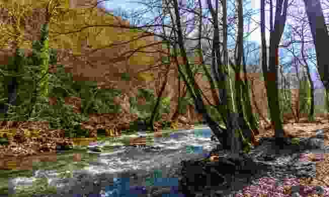 Follow the Karpenisiotis River on horserback
