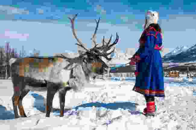 A traditionally-dressed Sami woman alongside a reindeer, in Tromsø, Norway (Shutterstock)