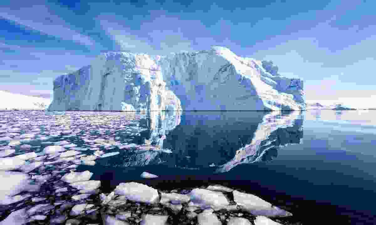 Vast iceberg (Alesha Bradford)