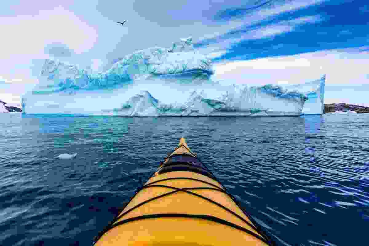 Kayaking through icebergs (Alesha Bradford)