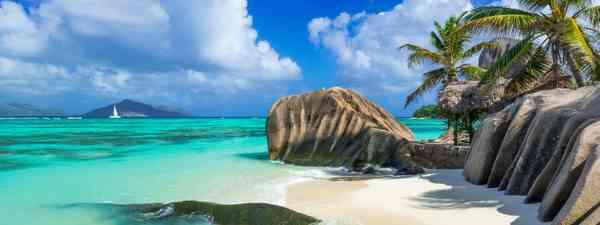 A beach in the Seychelles  (Shutterstock)