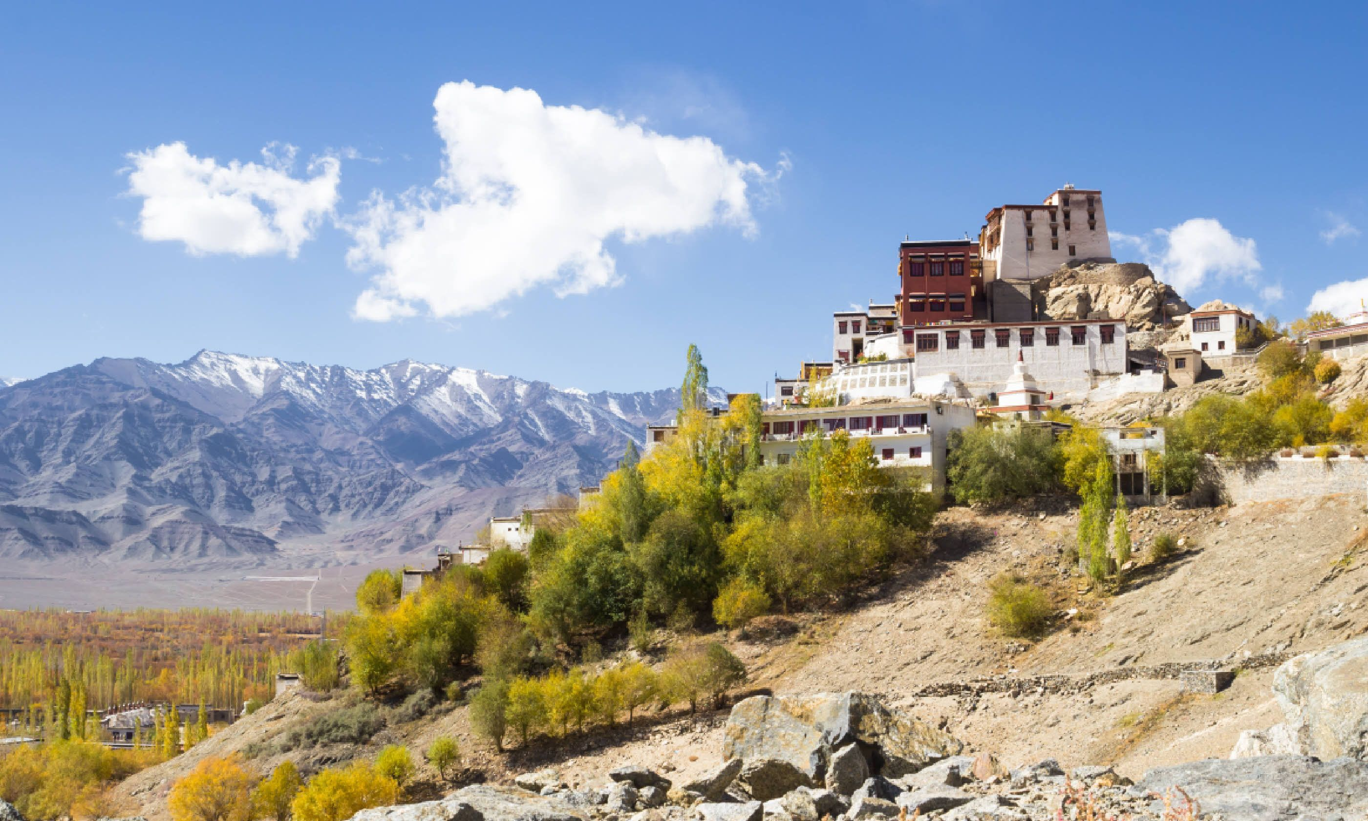 Thikse Monastery (Shutterstock)