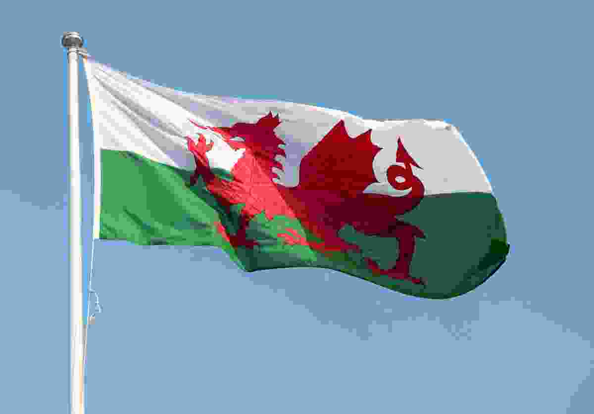 Daffodil and leek on Welsh flag (Shutterstock)